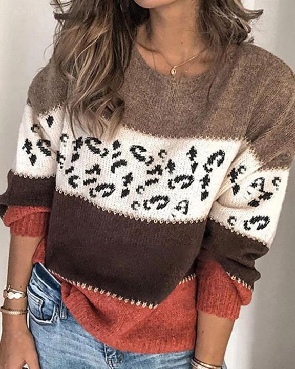 Colorblock & Leopard Print Drop Shoulder Sweater gallery 2