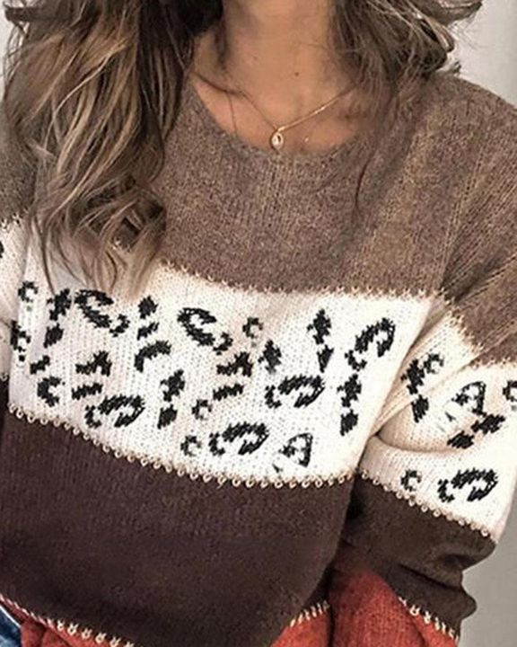 Colorblock & Leopard Print Drop Shoulder Sweater gallery 3